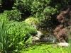 Large pond fall