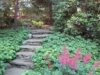 Pathway view (small)